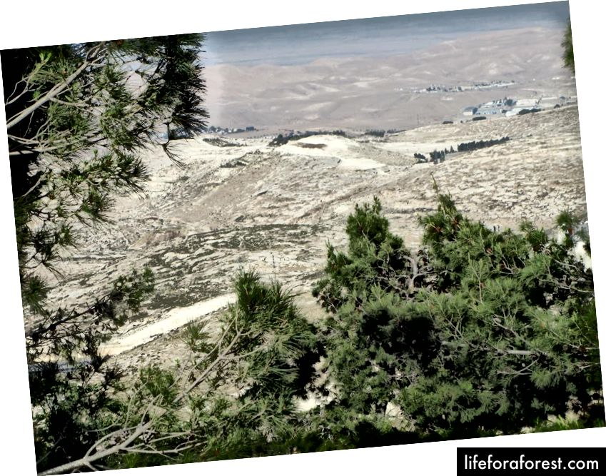Za jasného dne můžete vidět Mrtvé moře