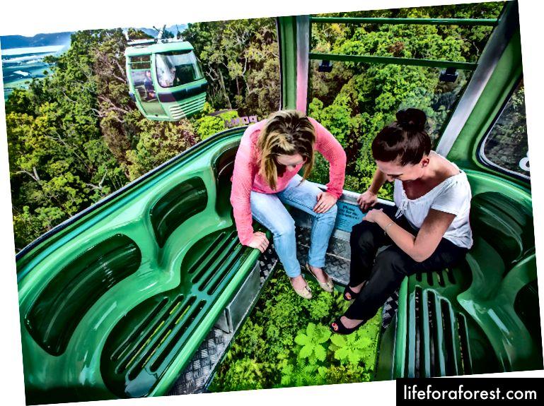 Nếu bạn sợ độ cao thì hãy nhìn xuống!