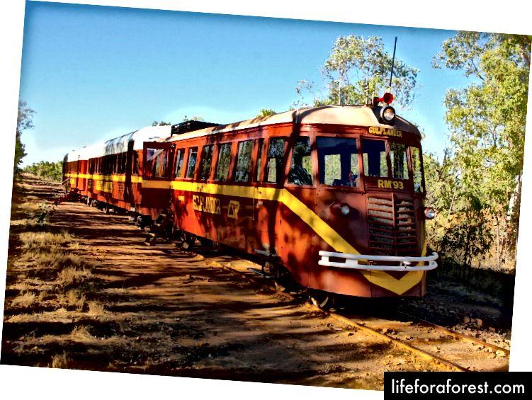 Bạn có cảm giác chân thực về bụi cây Aussie trong chuyến đi miền tây này
