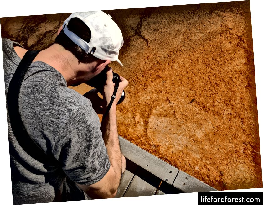 Nếu bạn thích Grand Prismatic Spring ở Yellowstone, bạn sẽ thích điều hướng lối đi hẹp đi ngang qua nó trong khi cố gắng không chạy qua những người đang chụp những gì bạn cho là những bức ảnh tuyệt vời! (Tiết lộ đầy đủ: Đây là bạn của tôi và tôi cá là những bức ảnh vi khuẩn của anh ấy rất tuyệt.) (Ảnh của Eric Goldschein)