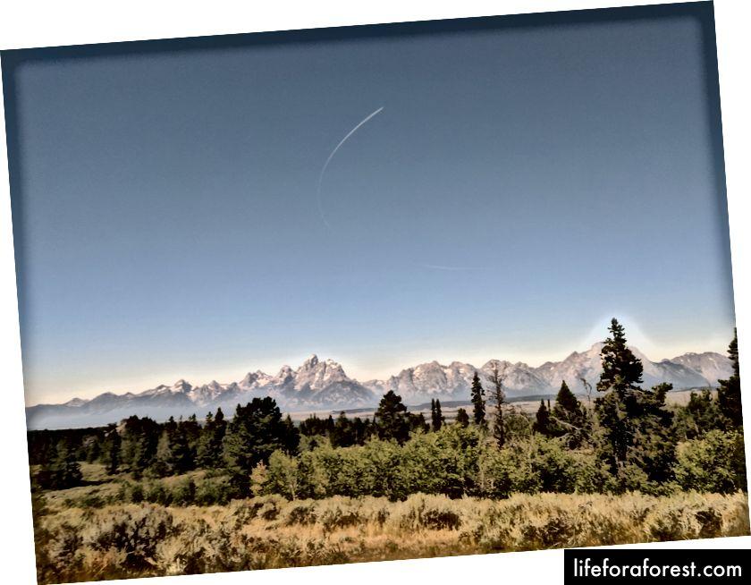 Dãy Grand Teton, được nhìn toàn cảnh từ khắp đường phố, đường trong rừng quốc gia Bridger-Teton. (ảnh của Eric Goldschein)