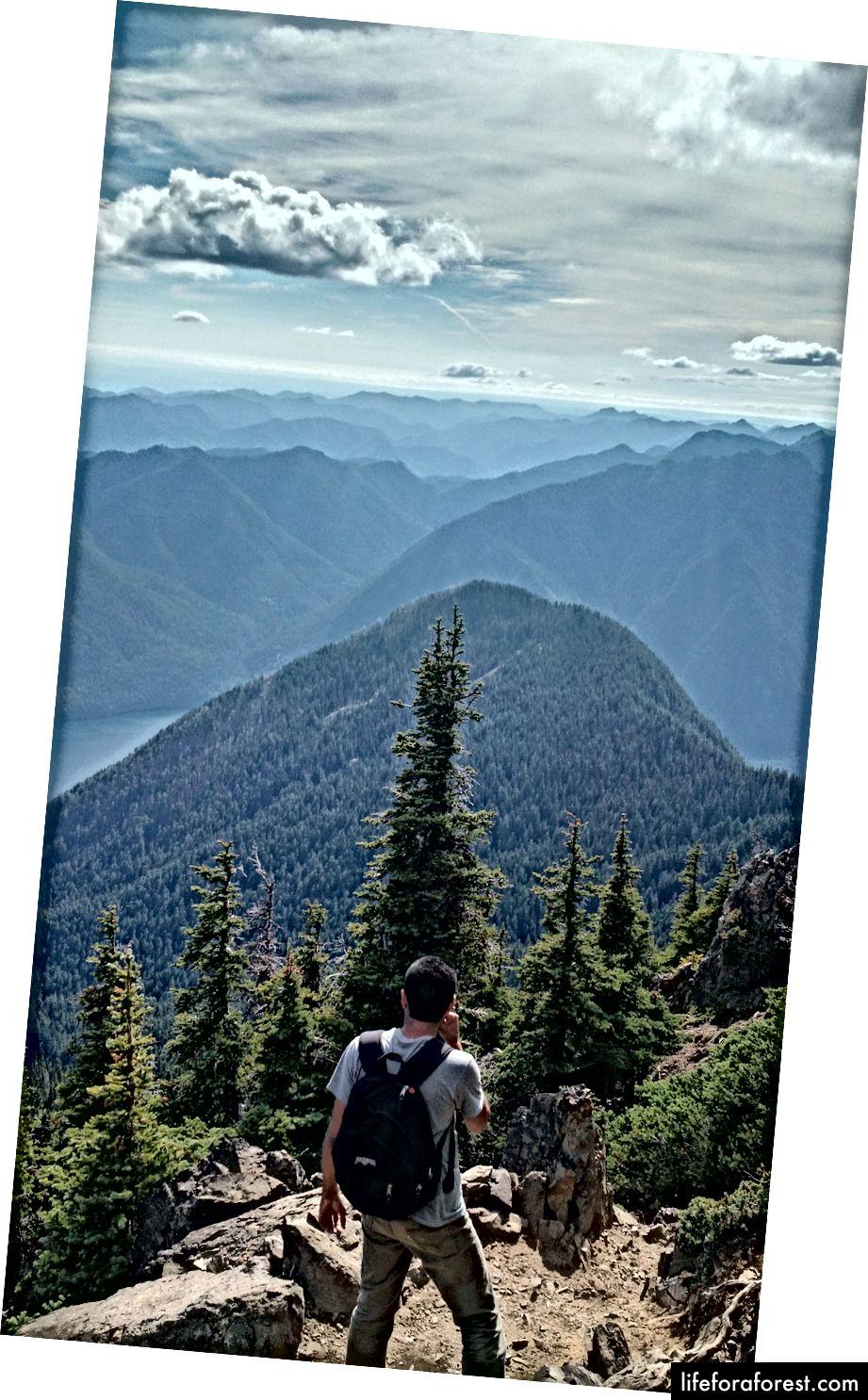 Tôi có thể đảm bảo bạn sẽ thắng được nếu bạn leo lên đỉnh Mt. Ellinor, phía tây Seattle. (Ảnh của Eric Goldschein)