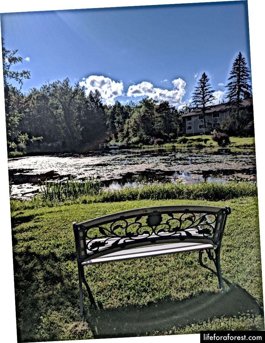 Đây chỉ là một chiếc ghế dài ở đâu đó trong dãy núi Catskill. Nó đẹp. Nó có đẹp như Grand Canyon không? Điều đó không cho tôi quyết định. Nó là một điểm tốt, mặc dù. (Ảnh của Eric Goldschein)