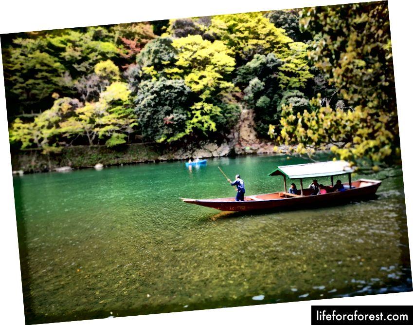 ป่าไผ่ Arashiyama คุ้มค่ากับการเดินทางแม้กับเด็ก ๆ เพียงให้แน่ใจว่าคุณตัดสินใจที่จะกินก่อนที่จะไป