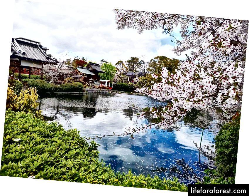 เกียวโตเป็นเมืองที่สวยงามมาก!