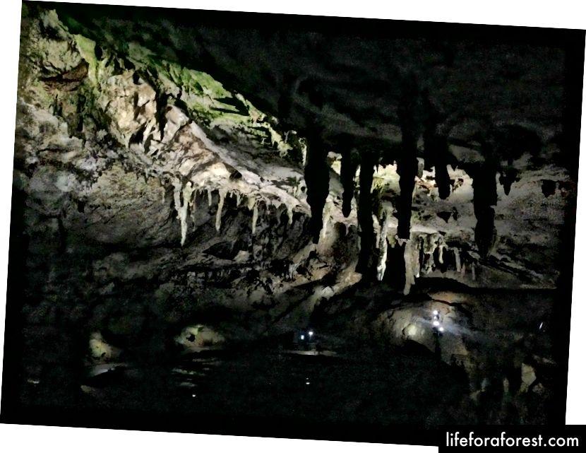 Jeskyně Akiyoshi, Yamaguchi. Zdroj obrázku: Soramimi prostřednictvím Wikimedia Commons.