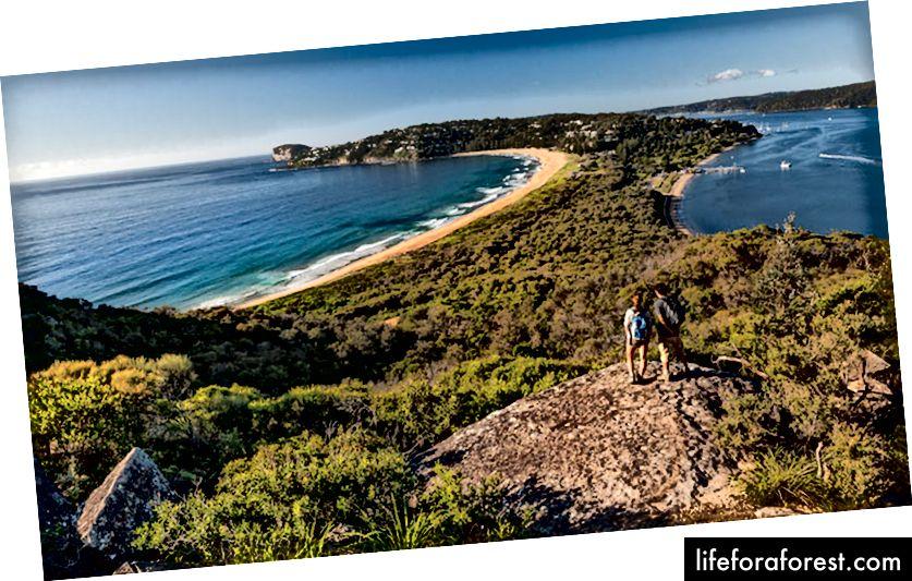 Ngọn hải đăng Barrenjoey (nguồn: Công viên quốc gia NSW)