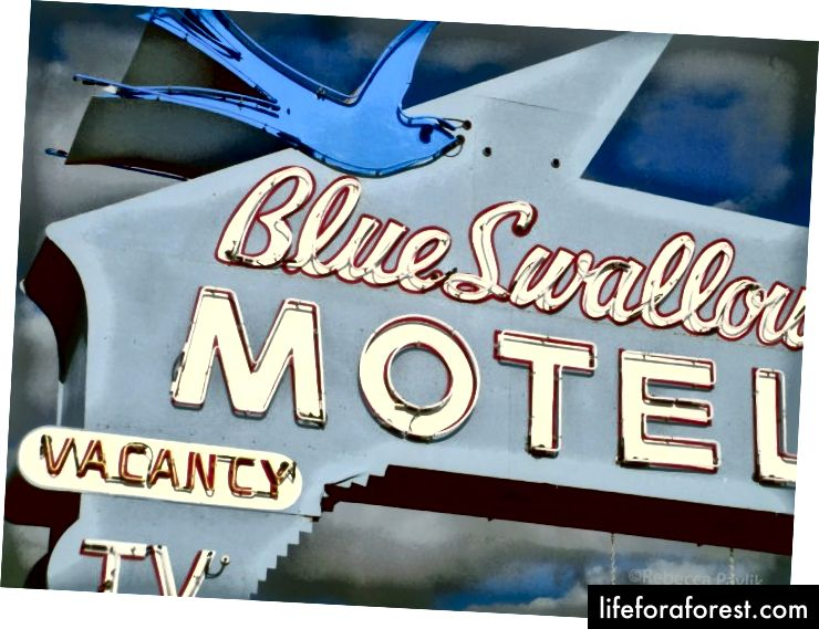 The Blue Swallow Motel, Tucumcari, New Mexico | Foto © Rebecca Pavlik