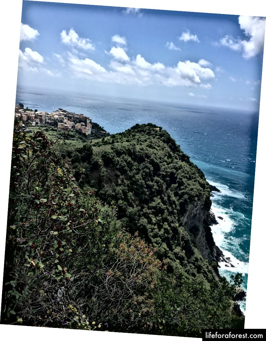 Pemandangan pantai Cinque Terre
