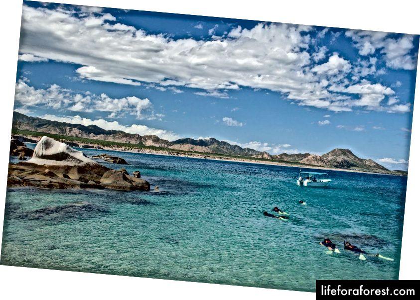 ที่มา: อุทยานทางทะเล Cabo Pulmo