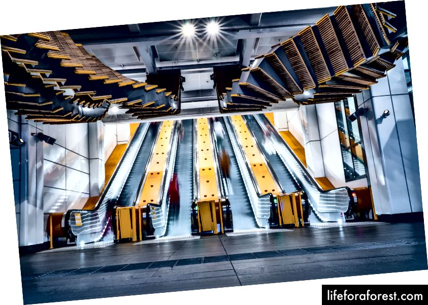 Escalators à la station de Wynyard. Image: James Ree sur Unsplash