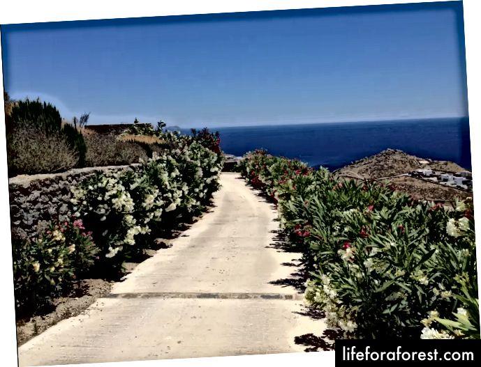 O caminho para a Vila de Dragan