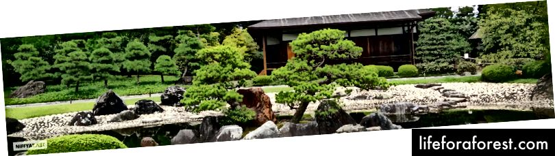 Nijō Castle, Kyoto