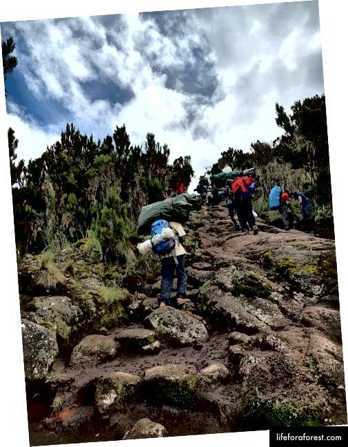 2 giờ đầu tiên liên quan đến số lượng đáng kể của leo núi. Ảnh Tín dụng: Omobolaji Badmus