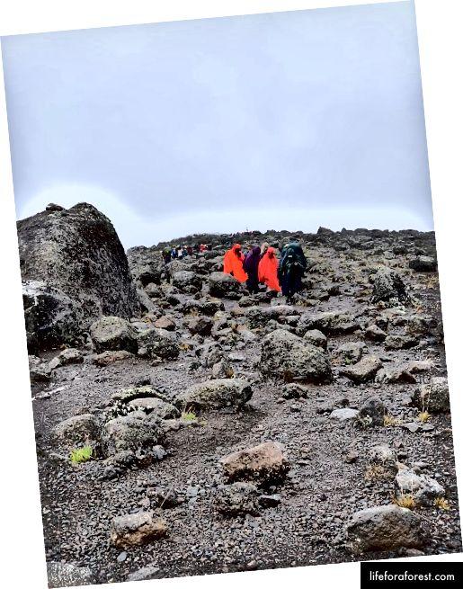 Đi bộ qua sa mạc núi cao. Ảnh Tín dụng: Omobolaji Badmus