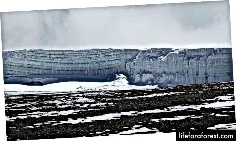 Bức tường băng khi chúng tôi đi đến điểm Stella (3 độ dưới đường xích đạo) Ảnh Tín dụng: Tunde Majiyagbe