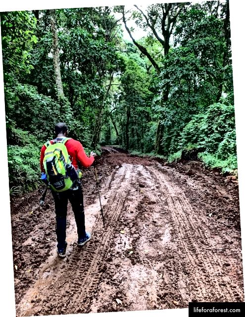 Con đường bùn xuống dốc. Ảnh Tín dụng: Omobolaji Badmus
