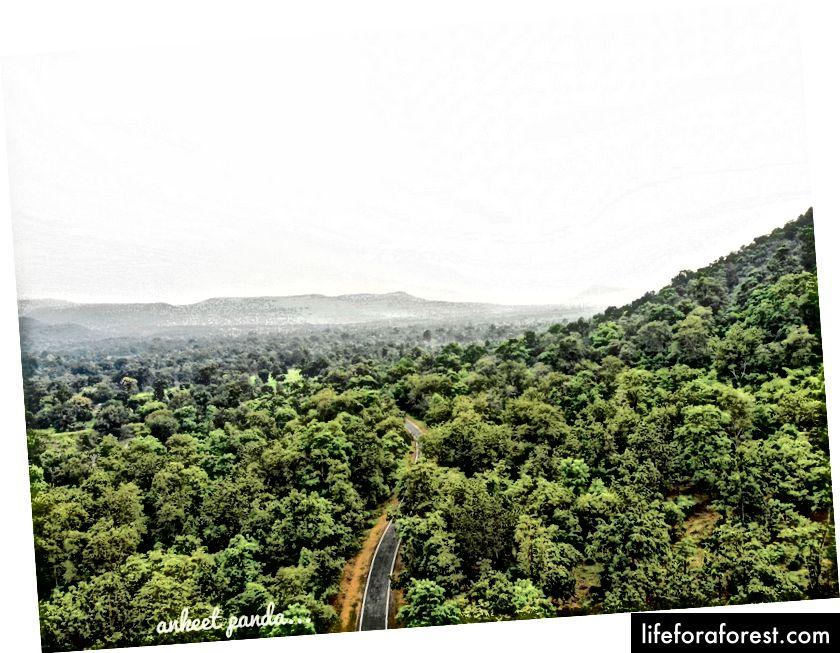 Trasa Bargarh-Ambabhona jest zaskakująco w doskonałym stanie, z niewielkim natężeniem ruchu.