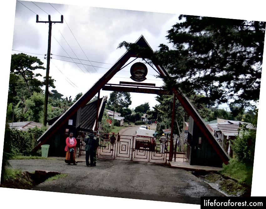 Kilimanjaro milliy bog'iga kirish - Kris 73 surati