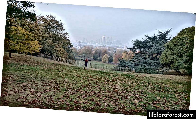 Nyd friheden i Greenwich Park