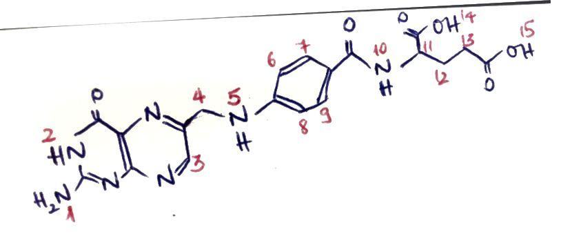 Struktura folne kiseline