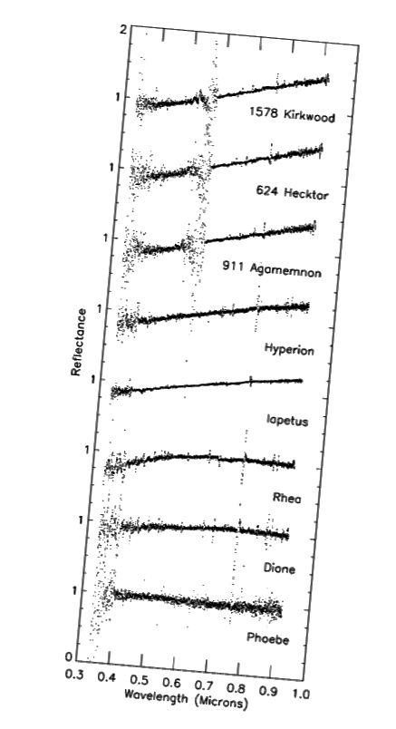 Figura 1, Buratti et al. 2002.