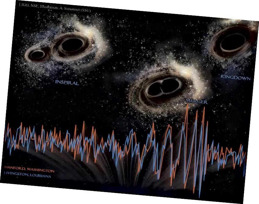Սև անցքերի միաձուլումը օբյեկտների մեկ դաս է, որը ստեղծում է որոշակի հաճախությունների և ամպլիտուդների գրավիտացիոն ալիքներ: LIGO- ի նման դետեկտորների շնորհիվ մենք կարող ենք «լսել» այդ հնչյունները, երբ դրանք տեղի են ունենում: Պատկերի վարկ. LIGO, NSF, A. Simonnet (SSU):