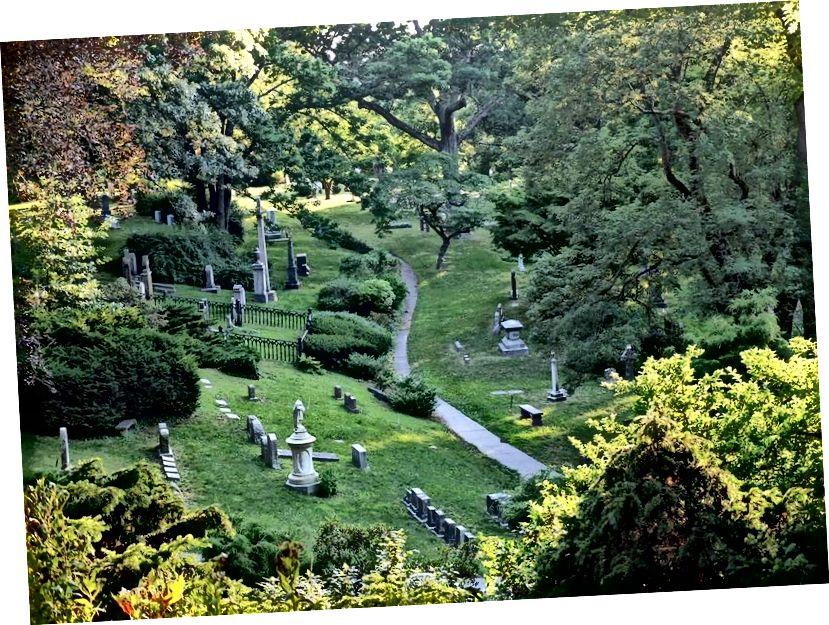 Di kota-kota besar, kuburan kerap sangat dibutuhkan pelestarian alam. Foto: Pemakaman Mount Auburn
