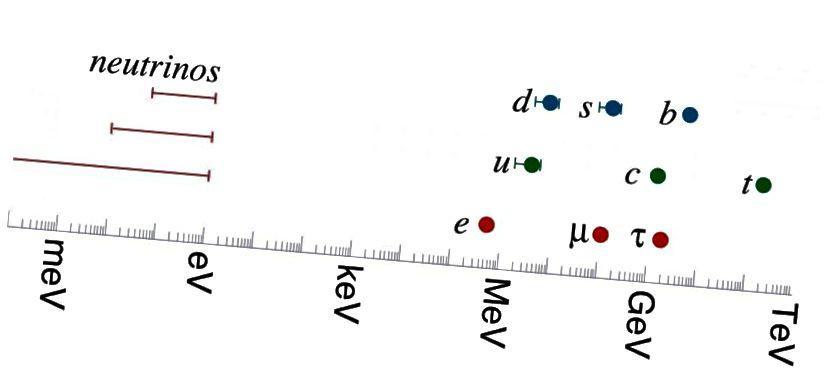 Masserne af kvarkerne og leptonerne i standardmodellen. Den tyngste standardmodelpartikel er den øverste kvark; den letteste ikke-neutrino er elektronet. Selve neutrinoerne er mindst 4 millioner gange lettere end elektronet: en større forskel end der findes mellem alle de andre partikler (Hitoshi Murayama fra http://hitoshi.berkeley.edu/)