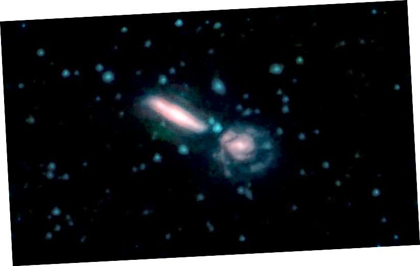 Ova slika prikazuje dvije galaksije u galaktičkom spajanju poznatom kao Arp 302, koji se također naziva VV 340. Na tim slikama različite boje odgovaraju različitim valnim duljinama infracrvenog svjetla. Plava i zelena su valne duljine koje zvijezde snažno emitiraju. Crvena je valna duljina koju uglavnom emitira prašina. Zasluge: NASA / JPL-Caltech