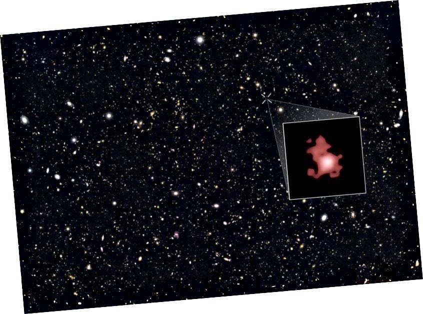 Das GOODS-N-Feld mit der hervorgehobenen Galaxie GN-z11: die derzeit am weitesten entfernte Galaxie, die jemals entdeckt wurde. (NASA, ESA, P. Oesch (Universität Yale), G. Brammer (STScI), P. van Dokkum (Universität Yale) und G. Illingworth (Universität von Kalifornien, Santa Cruz))