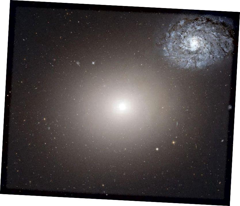 Arp 116, dominat per la gegantina el·líptica Messier 60. Sense grans poblacions de gas per formar noves estrelles, les estrelles que ja existeixen dins de la galàxia acaben cremant-se, no deixant gaire cosa que pugui il·luminar el cel enrere. Les galàxies el·líptiques riques en metalls que es van quedar sense combustible el més ràpid podrien ser els millors llocs per buscar els primers planetes habitables que van sorgir a l'Univers. (TELESCOPI DE L'ESPAI HUBBLE NASA / ESA)