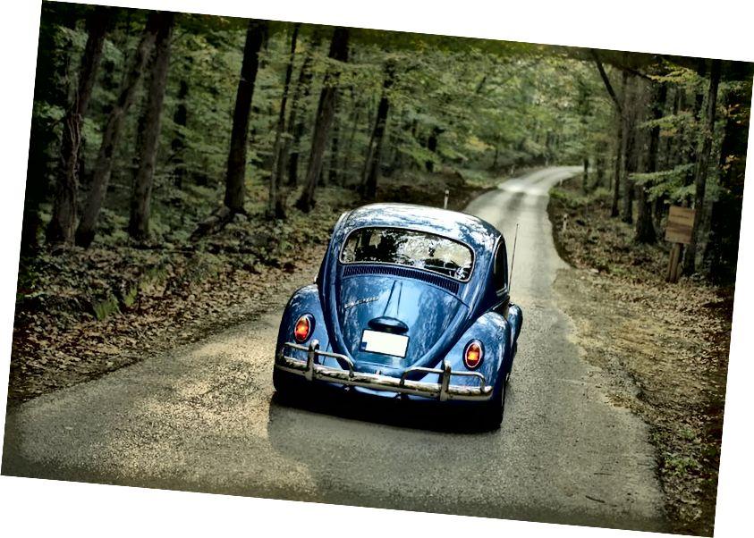 Бурак Кебапчы - https://www.pexels.com/photo/blue-forest-car-vehicle-64191/