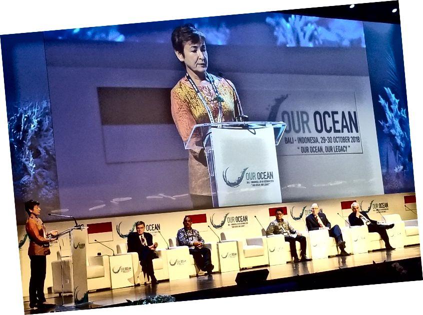 Изображение предоставлено: Our Ocean 2018