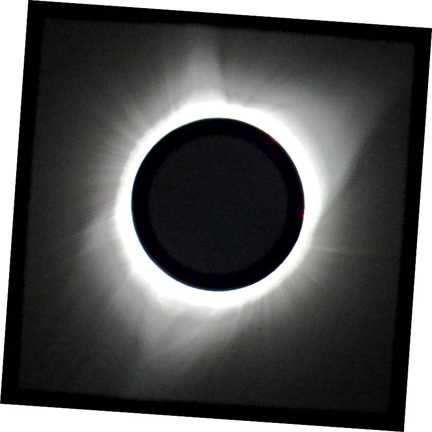 Solens korona kan ses under en total solformørkelse. Kredit: Zombiepedia på Wikipedia, CC BY-SA 4.0