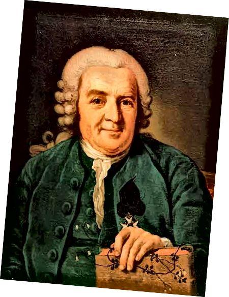 Կառլ Լիննեուսի նկարը `Պեր Կրաֆտ Երեցը: Պատկեր: Fred_J Wikimedia- ի միջոցով (Հասարակական դոմեն, 1773)