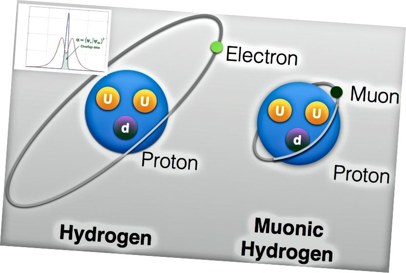 Eine (nicht maßstabsgetreue) Darstellung von normalem Wasserstoff und Myonwasserstoff mit Wellenfunktionsüberlappung ist im Bild dargestellt. Bildnachweis: University of Taiwan (Haupt) und Molecular Beam Epitaxy Group an der University of Maryland (Einschub).