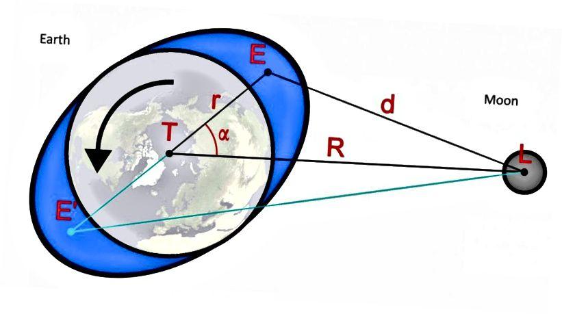 Der Mond übt eine Gezeitenkraft auf die Erde aus, die nicht nur unsere Gezeiten verursacht, sondern auch die Erdrotation bremst und den Tag anschließend verlängert. Während der Mond zwei Gezeitenwölbungen auf der Erde erzeugt, die sich einmal pro Tag drehen, erleben wir täglich zwei Ebben und zwei Fluten. (WIKIMEDIA GEMEINSAME BENUTZER WIKIKLAAS UND E. SIEGEL)