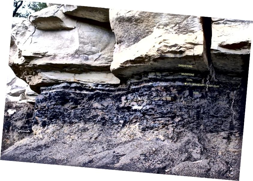 Памежны крэйдавы палеагенскі пласт вельмі выразны ў асадкавых пародах, але менавіта тонкі пласт попелу і яго элементарны склад вучаць нас пра іншаземнае паходжанне ўздзеяння, што выклікала масавае выміранне. (Джэймс Ван Гундзі)
