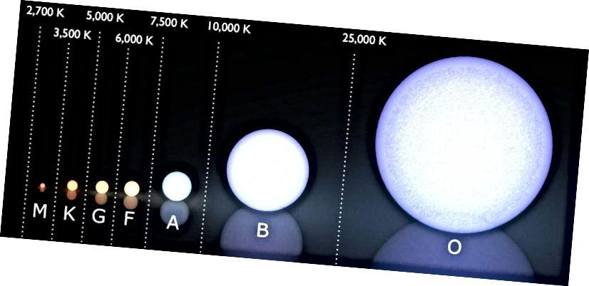 (Współczesny) system klasyfikacji widmowej Morgana-Keenana, z zakresem temperatur każdej klasy gwiazd pokazanym powyżej, w stopniach Kelvina. Zdecydowana większość dzisiejszych gwiazd to gwiazdy klasy M, z zaledwie 1 znaną gwiazdą klasy O lub B w odległości 25 parsek. Nasze Słońce jest gwiazdą klasy G. (Użytkownik Wikimedia Commons LucasVB, uzupełnienia E. Siegel)