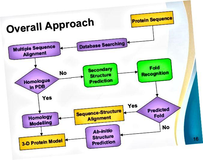 Схема принятия решения для метода прогнозирования структуры белка.