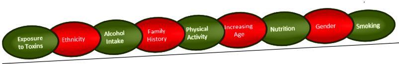 Banyak aspek yang dapat memengaruhi modifikasi epigenetik, termasuk yang Anda dapat (hijau) dan tidak bisa (merah) berubah. Sumber: Nutrisi.