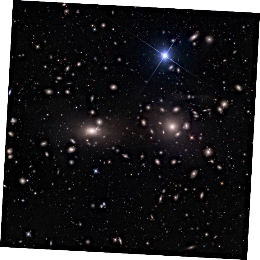 Der Koma-Galaxienhaufen, der dichteste und reichste Galaxienhaufen in der Nähe, nur 330 Millionen Lichtjahre entfernt. Bildnachweis: Adam Block / Mount Lemmon SkyCenter / Universität von Arizona, unter cc-by-sa-3.0.