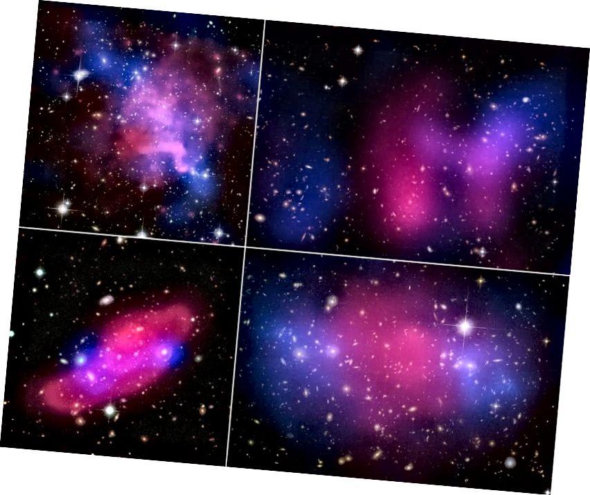 Vier kollidierende Galaxienhaufen, die die Trennung zwischen Röntgenstrahlen (rosa) und Gravitation (blau) zeigen, was auf dunkle Materie hinweist. Im großen Maßstab ist CDM notwendig, aber im kleinen Maßstab ist es allein nicht so erfolgreich, wie wir es möchten. (Röntgen: NASA / CXC / UVic. / A. Mahdavi et al. Optisch / Linse: CFHT / UVic. / A. Mahdavi et al. (Oben links); Röntgen: NASA / CXC / UCDavis / W. Dawson et al.; Optisch: NASA / STScI / UCDavis / W.Dawson et al. (Oben rechts); ESA / XMM-Newton / F. Gastaldello (INAF / IASF, Mailand, Italien) / CFHTLS (unten links); X. -ray: NASA, ESA, CXC, M. Bradac (Universität von Kalifornien, Santa Barbara) und S. Allen (Stanford University) (unten rechts))