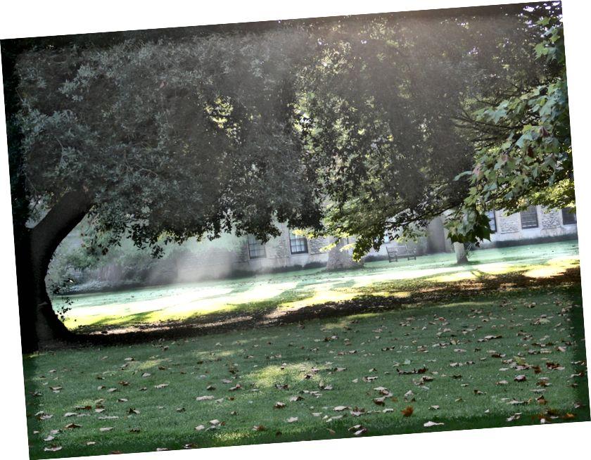 Sunbeams ag taitneamh trí na crainn ag Oxford, ag úsáideoir Wikimedia Commons Remi Mathis, faoi cheadúnas cca-by-sa-3.0.