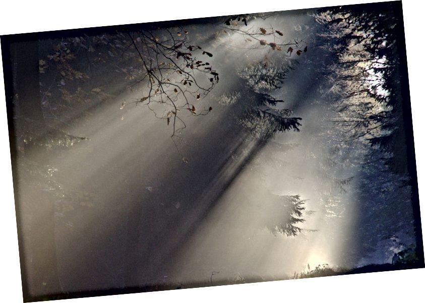 Grianghraf fearainn poiblí ó úsáideoirí Gréasáin Pixabay, trí https://pixabay.com/ga/sunbeam-fog-autumn-nature-sunlight-76825/.