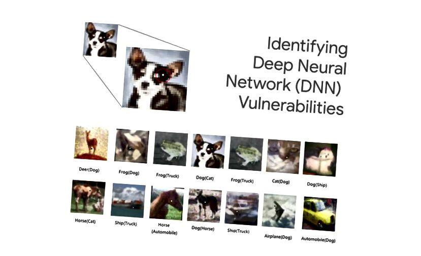 Figura 3 | Un pixel riesce ad attaccare con successo reti neurali profonde (DNN). Prima l'etichetta originale, seguita dall'output dell'attacco tra parentesi [9]
