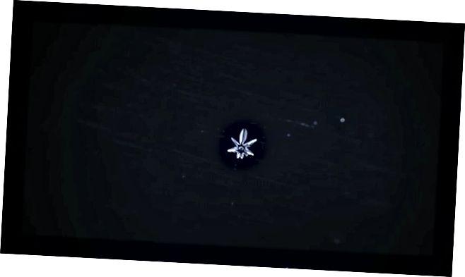 Pembentukan dan pertumbuhan kepingan salju, konfigurasi khusus kristal es. Meskipun kristal memiliki konfigurasi molekuler yang memungkinkan mereka untuk bereproduksi dan menyalin sendiri, mereka tidak memanfaatkan energi atau menyandikan informasi genetik. (VYACHESLAV IVANOV / VIMEO.COM/87342468)