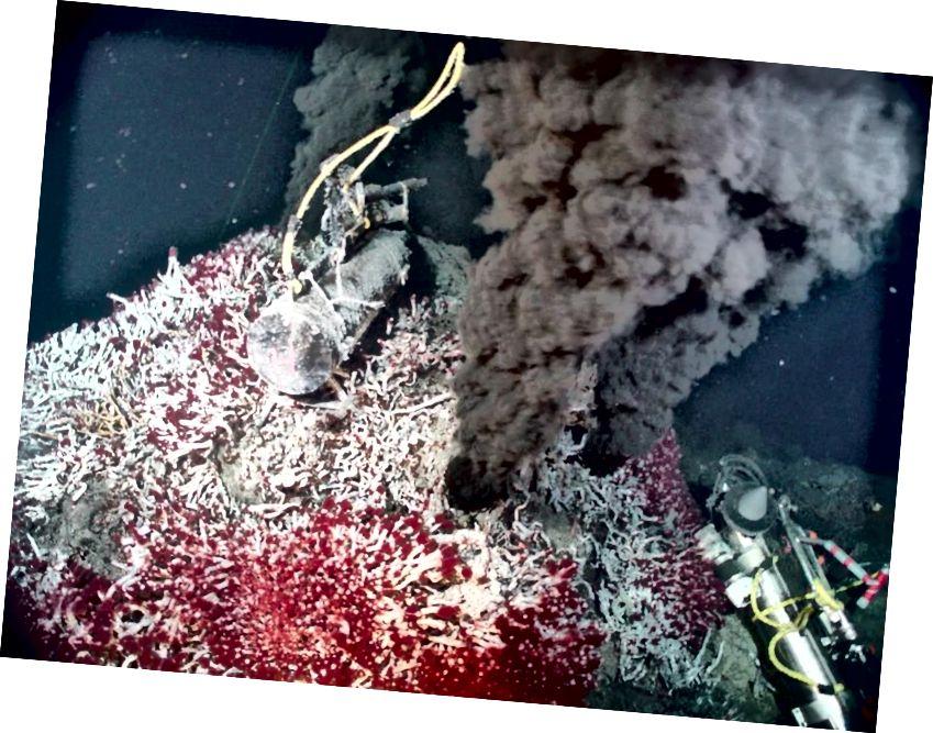 Jauh di bawah laut, di sekitar lubang hidrotermal, di mana tidak ada sinar matahari yang mencapai, kehidupan masih berkembang di Bumi. Bagaimana menciptakan kehidupan dari non-kehidupan adalah salah satu pertanyaan terbuka besar dalam sains saat ini. Jika kehidupan bisa ada di sini, di dasar samudera bumi, mungkin ada peluang untuk hidup di samudera bawah tanah yang dalam di Europa atau Enceladus juga. (PROGRAM Ventilasi NOAA / PMEL)