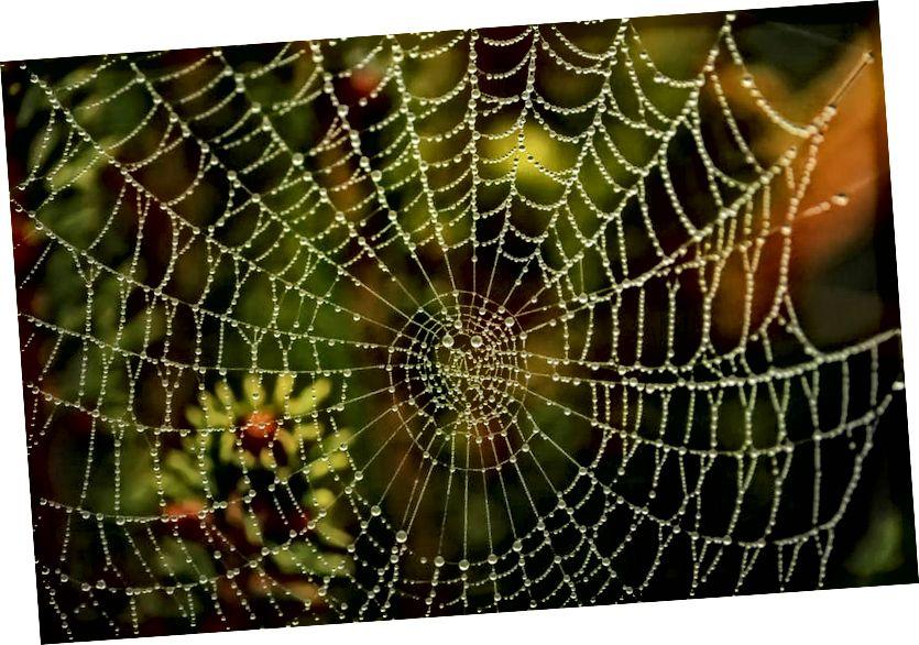 Graf (mreža vrhova povezanih preko rubova) intuitivan je način modeliranja našeg svemira.